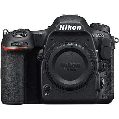 best nikon d500 dx camera for wildlife photography beginner