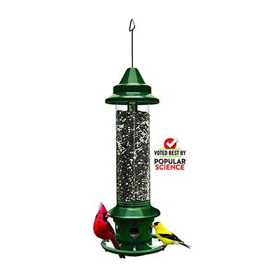 best squirrel buster plus wild bird feeder for cardinals