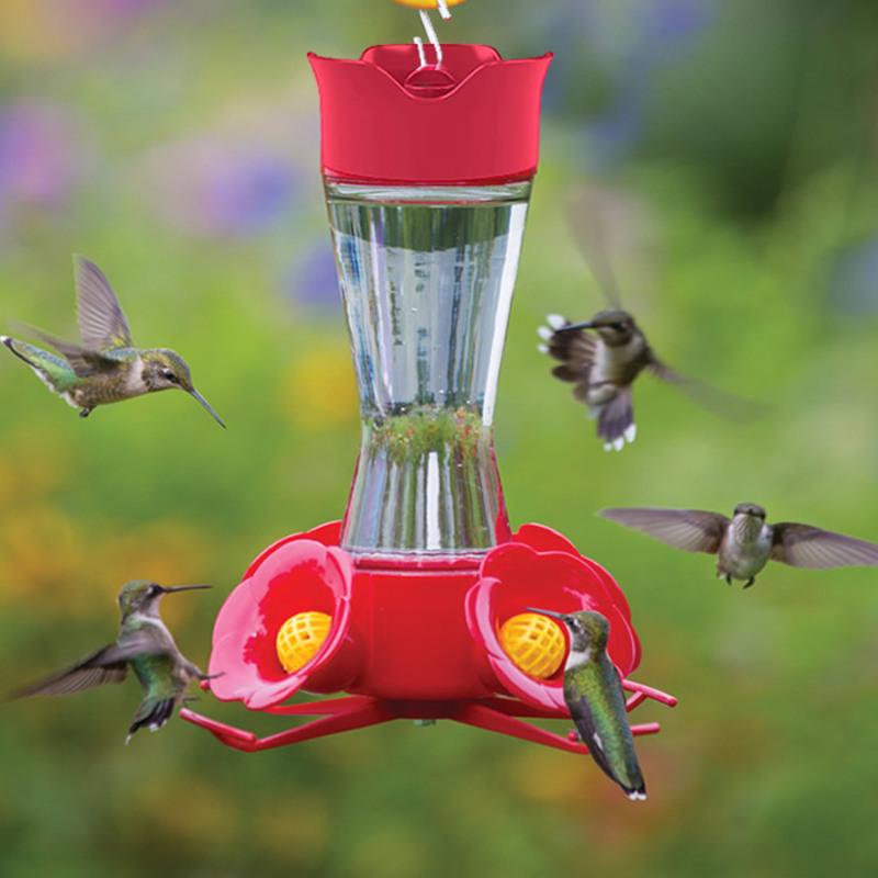 frolic feeder
