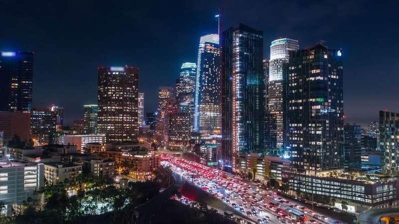 light pollution affects birds