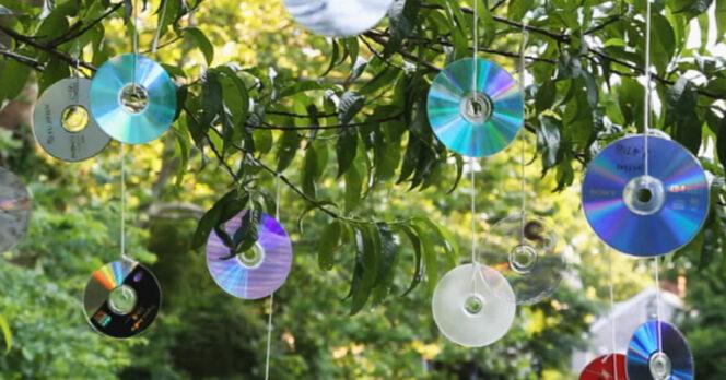 hanging cds